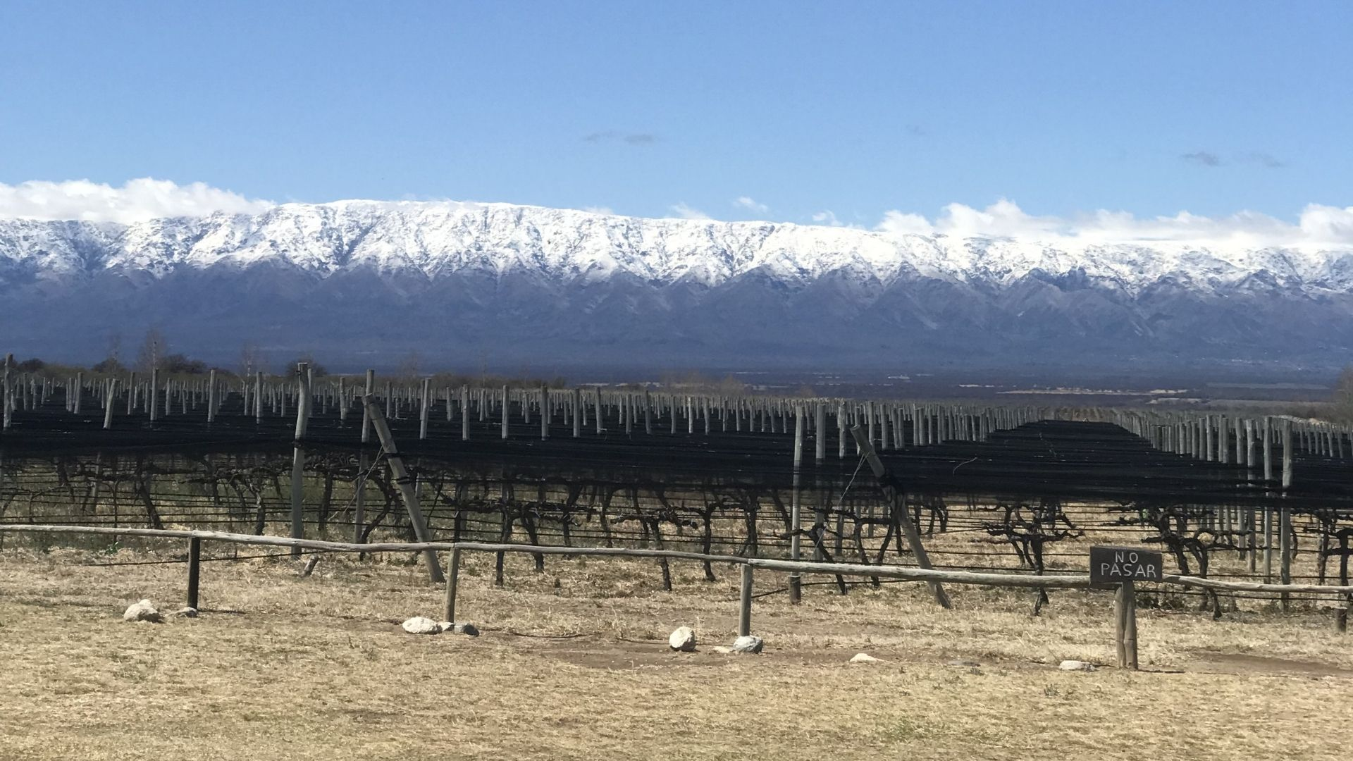 Viñas Puntanas, San Luis, Argentina